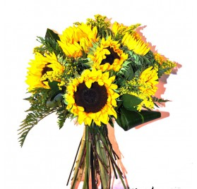 Sunflowers to Barcelona.