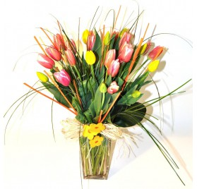 Enviar tulipes a Barcelona